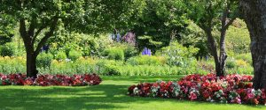 Beautifully Manicured Park Garden Landscape Installation