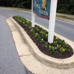 Flowers Planted at Front Entrance of Residential Development at Maple Woods