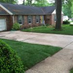 New Residential Lawn