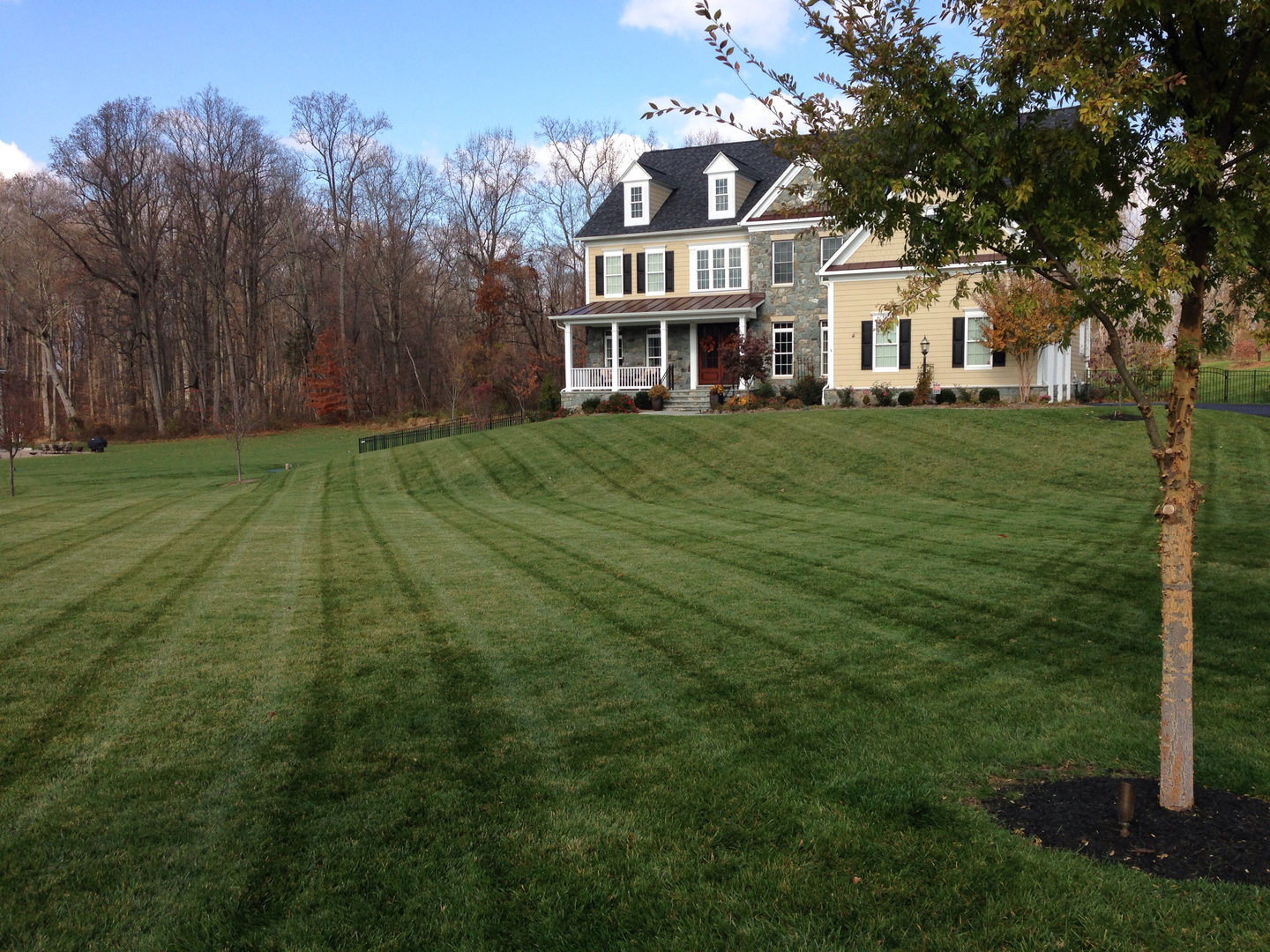 Learn how to keep your grass healthy and green year-round.