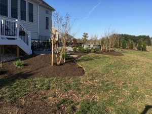 planting-projects1