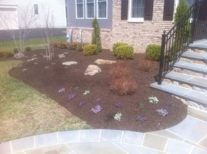Spring Cleanup and Mulching 2