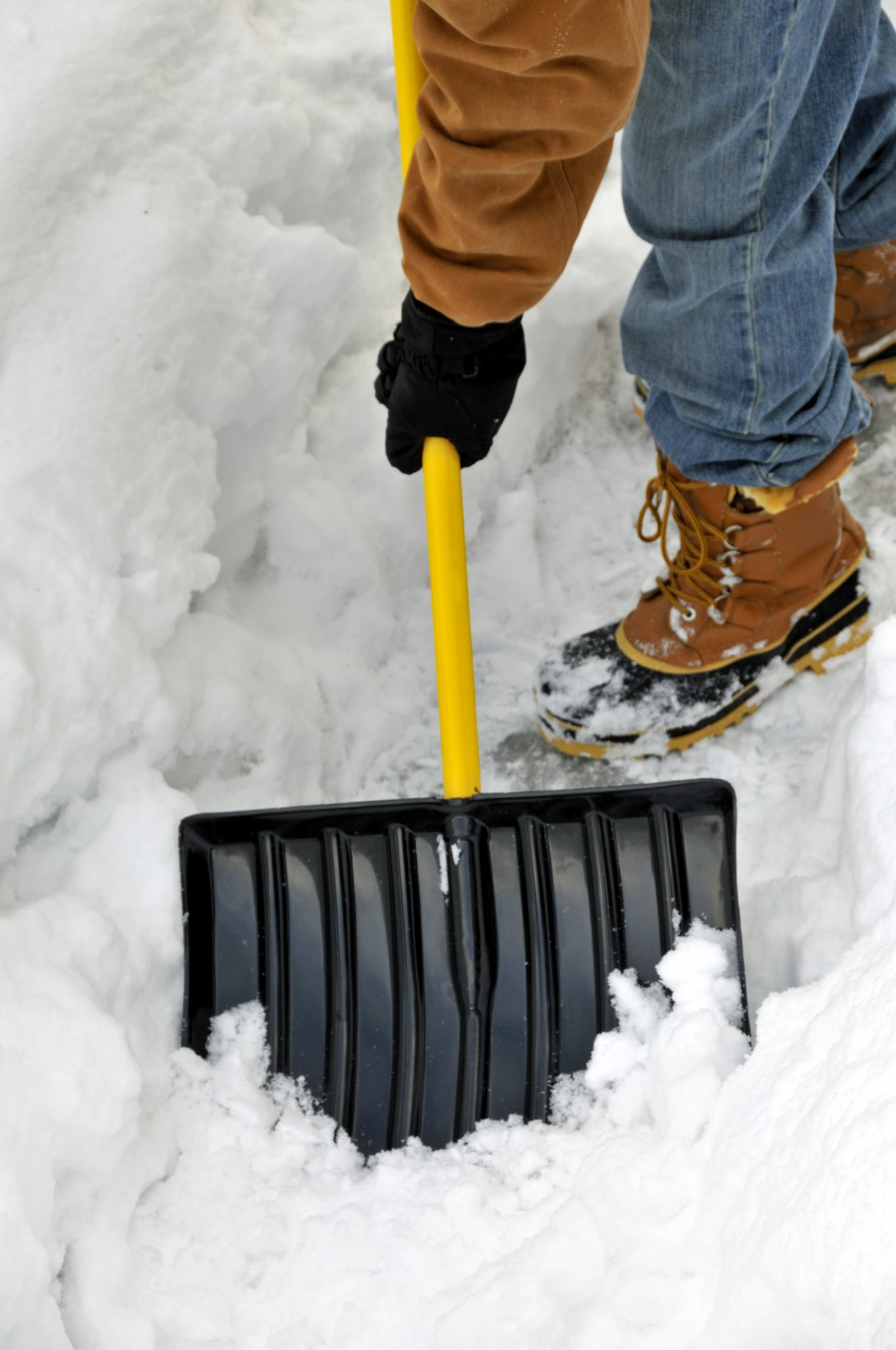 Learn about snow removal and how to protect your landscape.