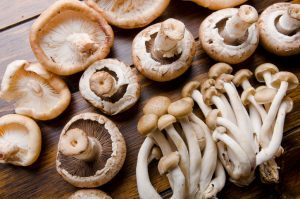 mushrooms in your lawn
