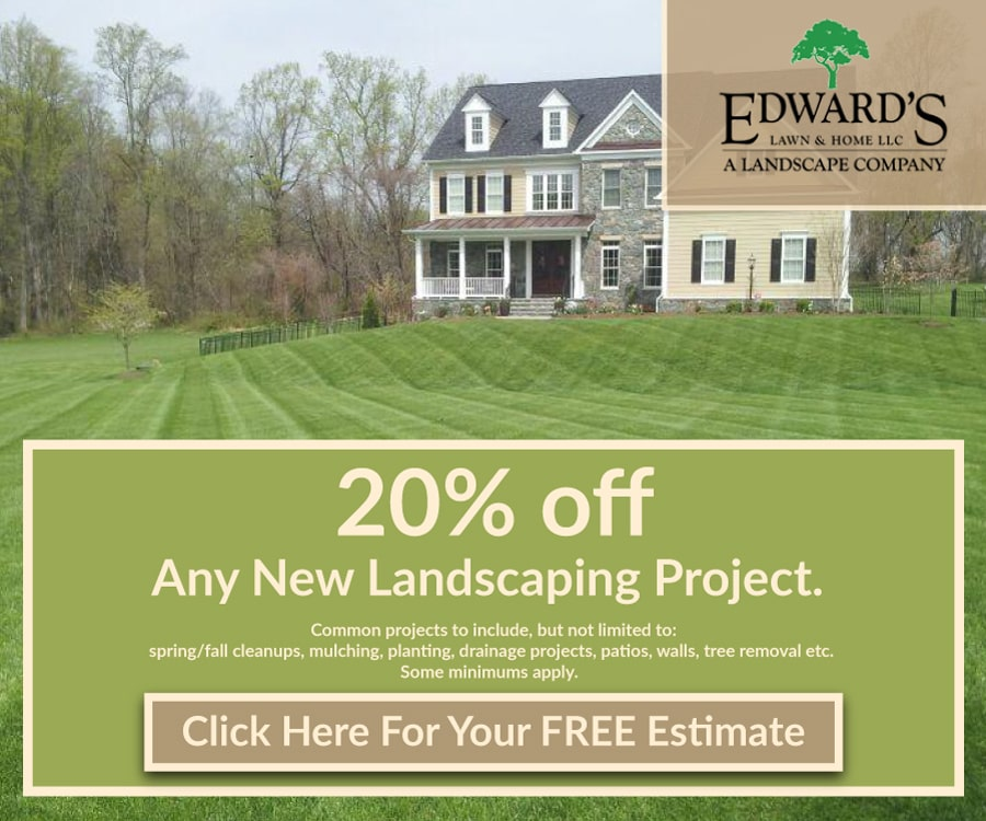 20% Off Any New Landscaping Project Ad