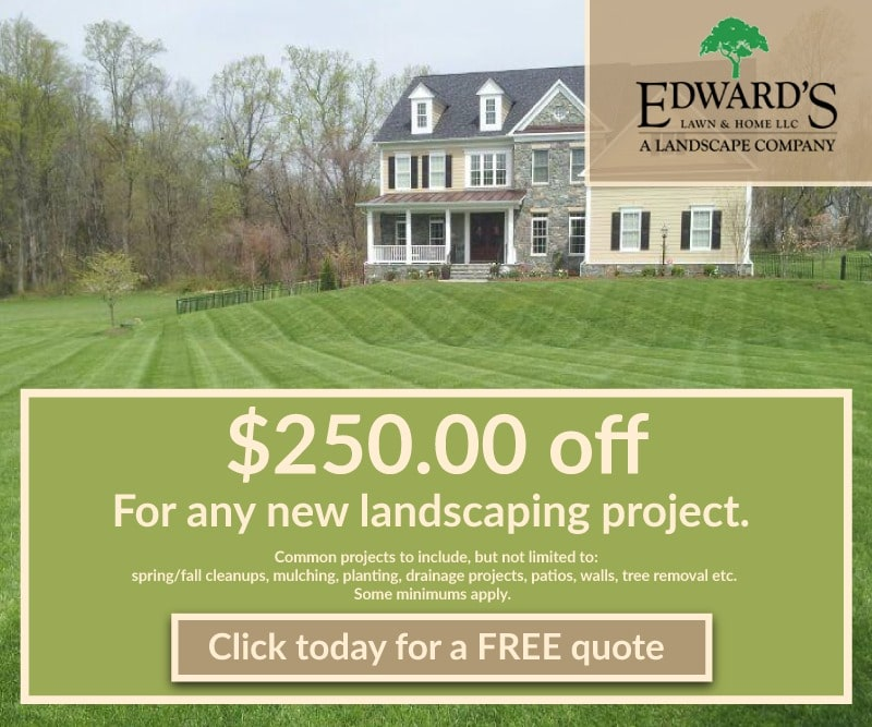 $250 Off for Any New Landscaping Project Ad
